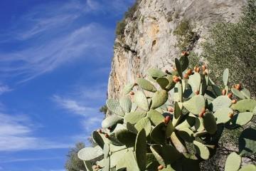 Kletterwoche Alicante