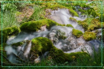 Wasseraufnahmen