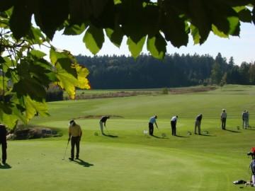 Golf Basiskurs kompakt