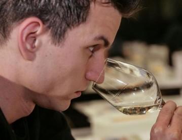 Weinbasiskurs Zürich