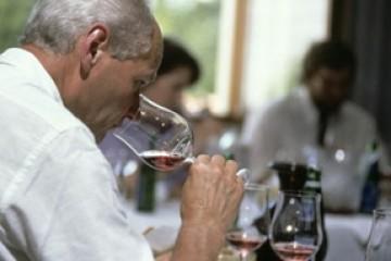 Essen und Wein Seminar Zürich