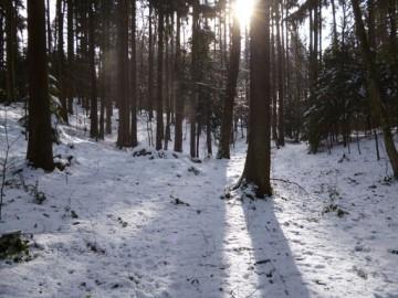 Wintersurvival Wochenende
