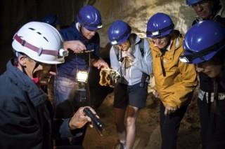 Teamevent: Exkursion Höhle