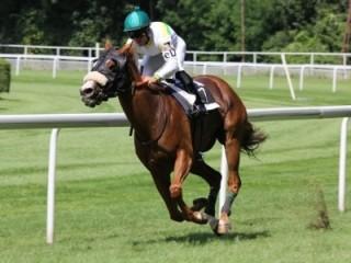 Fotokurs Speed und Sport