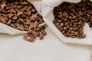 Home Roasting Kaffeekurs