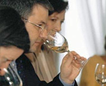 Weinkurs Degustieren Thun