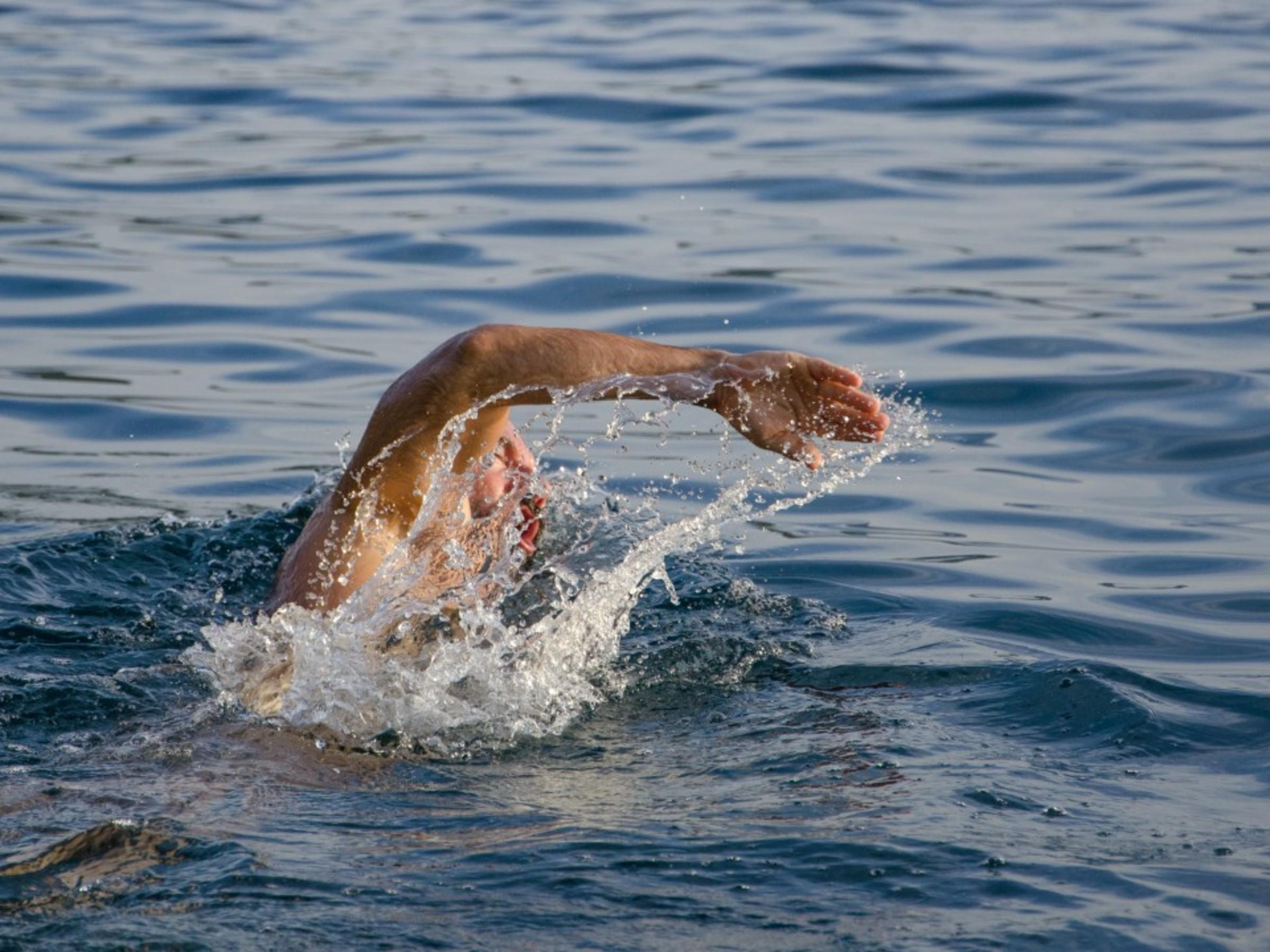 Kraulschwimmen für Anfänger (Erwachsene)