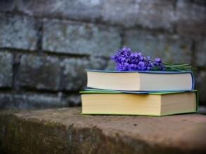 Schreibkurs : Kreatives Schreiben