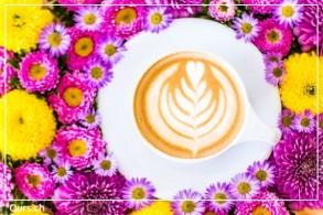Home Barista Latte Art Kurs - Latte Art für zuhause