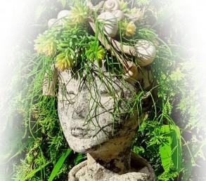 Kreativkurs: Pflanzenkopf herstellen inkl. bepflanzen