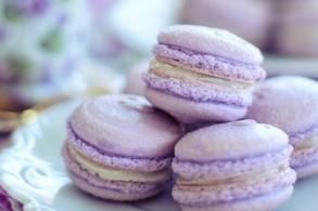 Macarons Meisterkurs