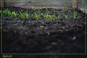 Gartenkurs: Urban Composting