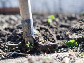 Urban farming - Ihr Garten in der Stadt