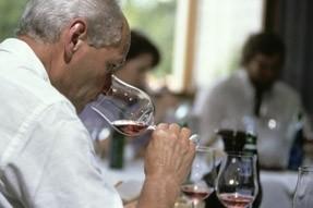 Essen und Wein: Welcher Wein zu welchem Essen (Zürich)